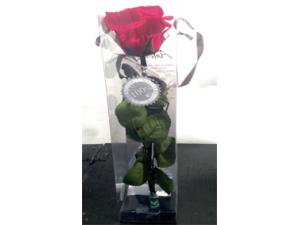 Rosa preservada 27cm