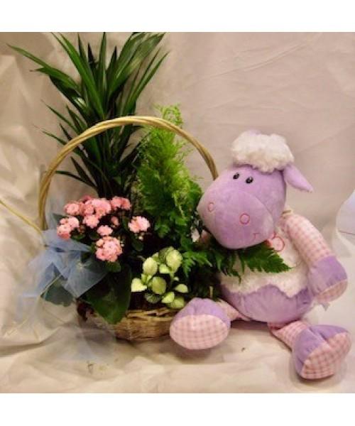Nacimiento cesta plantas variadas y muñeco