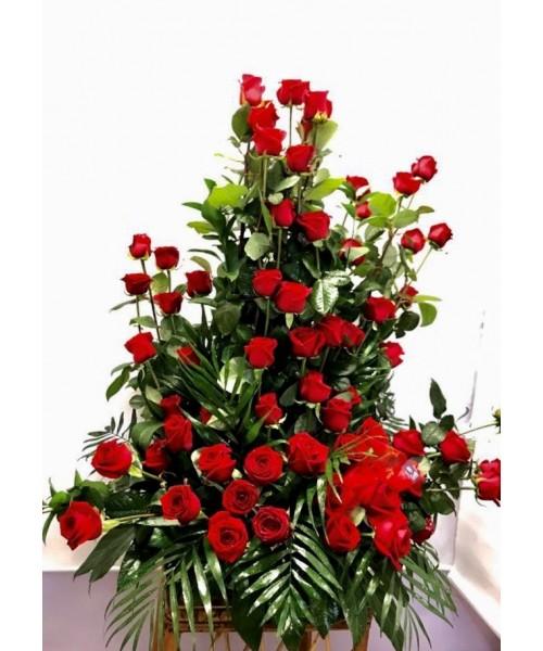 Amor con 60 Rosas
