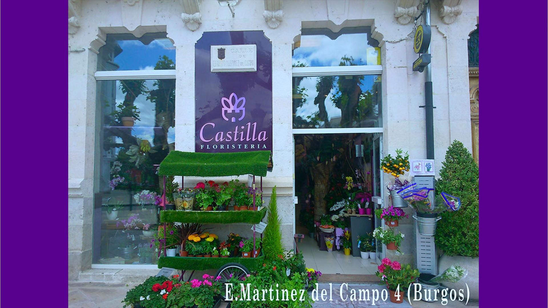 Martinez del Campo