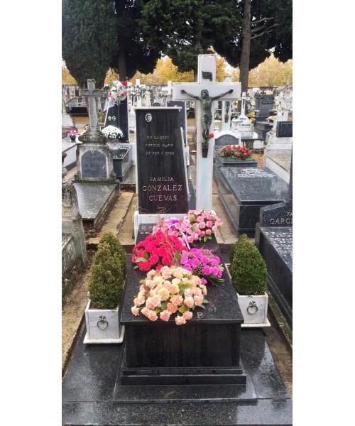 Colocamos tus flores en el Cementerio y limpiamos tu sepultura