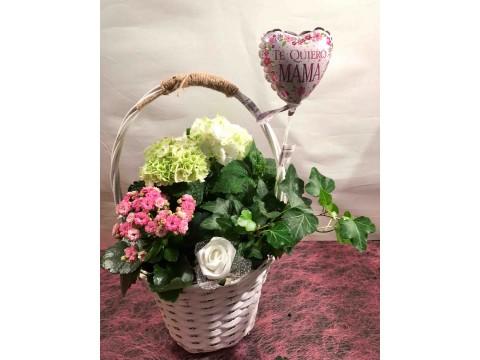 Cesta de mimbre con planta y hortensia