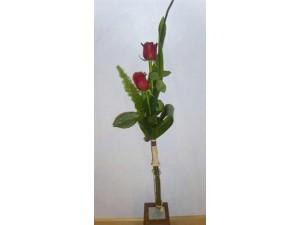 Detalle 2 rosas